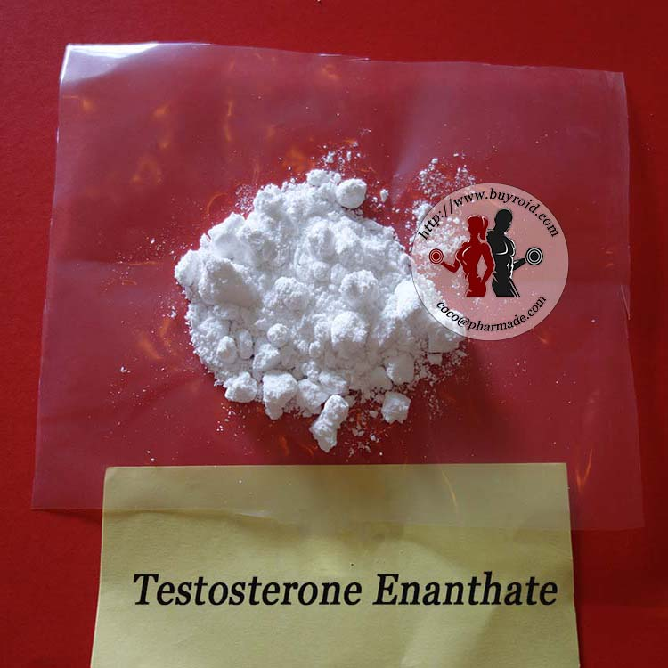 Buyroid.com Pure Steroid Powders Testosterone Enanthate